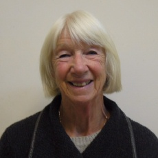 Cllr Sue Britton